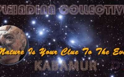 Nature Is Your Clue To The Event – Pleiadian Collective