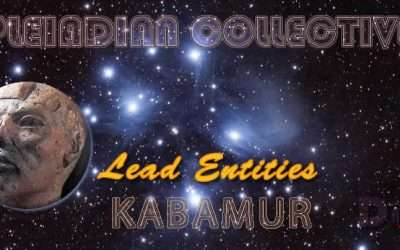 Lead Entities – Neioh – Pleiadian Collective