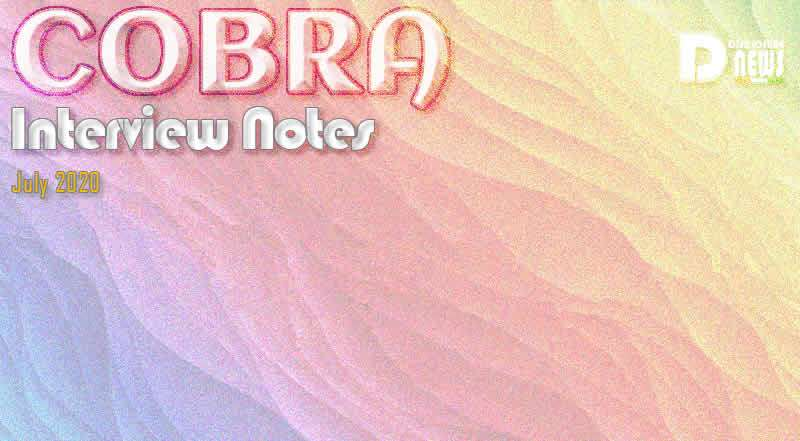 Cobra Interview Notes – July 2020